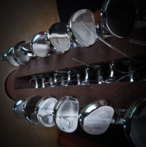 Kora neck from the back showing machine heads